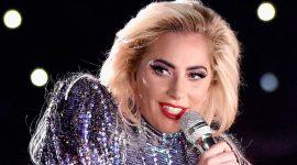 Lady Gaga se cayó del escenario con un fan